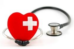 Orlando Veterinary   Orlando Electrocardiogram (ECG)      